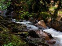 Whillan Beck Gorge